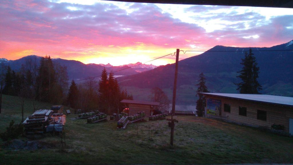 unser wunderschöner Ausblick auf die Berge und unseren Heimbienenstand